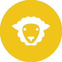 logo_shepherd